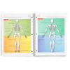 my1-agenda-primary-skeleton